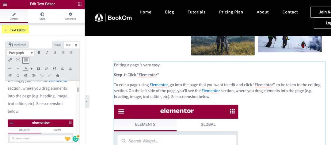 elementor text editor
